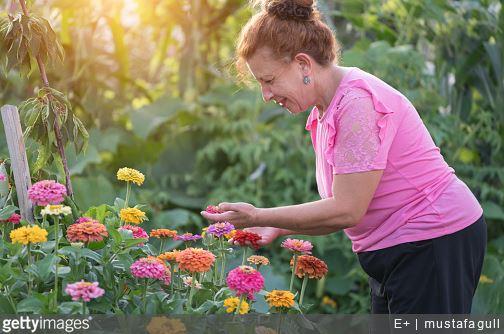 jardinage-comment-eviter-mal-de-dos-conseils